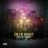Love & Reggae - Collie Buddz - Collie Buddz