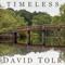 Timeless (feat. Steven Sharp Nelson)