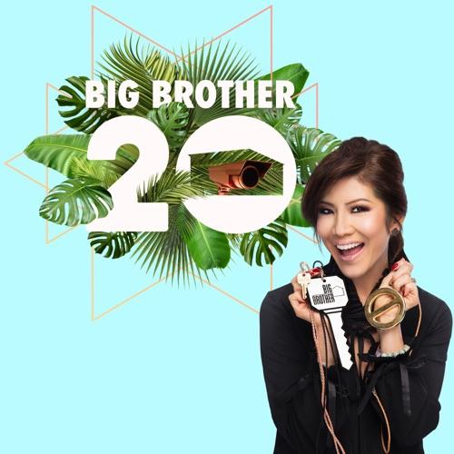 Big Brother, Season 20 image