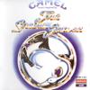 Camel - Rhayader Goes to Town (Live) kunstwerk