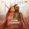 Nethu From Jagame Thandhiram Single