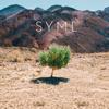 SYML - Where's My Love artwork