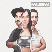 [Download] Meu Abrigo MP3