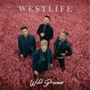 Starlight - Westlife mp3