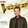 Where You Come From (The Voice Performance) - Britton Buchanan MP3