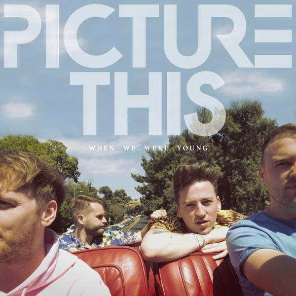 Picture This - When We Were Young