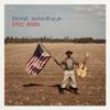 Eric Bibb - Whole World's Got The Blues (feat. Eric Gales) artwork