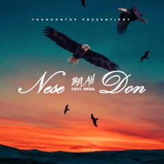 Nese Don (feat. Meda)
