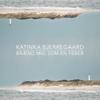 Katinka Bjerregaard - Brænd mig som en feber (fra TV2 serien Hvide Sande) artwork