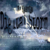 Digital Storm - DJ BabyGal