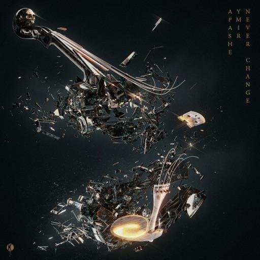 Never Change - Single by YMIR & Apashe