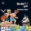 Folge 66: Geheimnis im Meer - Die drei ??? Kids