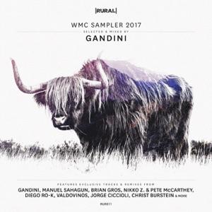Gandini - Dax