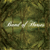 Band of Horses - The Funeral artwork