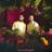 Download Mp3 MAX & Ali Gatie - Butterflies