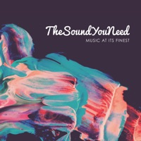Various Artists - TheSoundYouNeed, Vol. 1