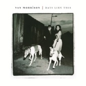 Van Morrison - No Religion