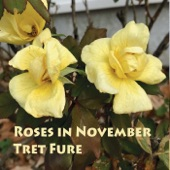 Tret Fure - New Years