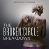 The Broken Circle Breakdown Bluegrass Band - The Broken Circle Breakdown (Original Motion Picture Soundtrack) artwork