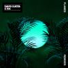 David Guetta & Sia - Flames (Igor Blaska Remix) grafismos
