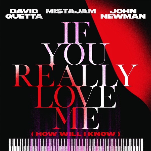 David Guetta, Mistajam & John Newman - If You Really Love Me (How Will I Know)