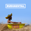 Rudimental - Toast to our Differences (feat. Shungudzo, Protoje & Hak Baker) artwork