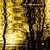 Esbjörn Svensson Trio - The Goldhearted Miner