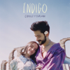 Camilo & Evaluna Montaner - Índigo portada