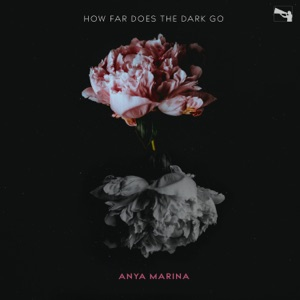How Far Does the Dark Go? - Single Mp3 Download