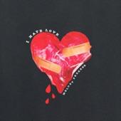 Melody Federer - I Hate Love (Radio Version)