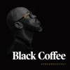 Black Coffee - You Need Me (feat. Maxine Ashley & Sun-El Musician) artwork