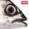 Tippa & JVG - Roska silmäs artwork