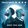 Craig David & MNEK - Who You Are artwork