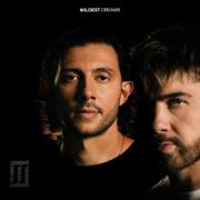 Wildest Dreams - Majid Jordan