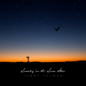 Lonely in the Lone Star - Jenny Tolman