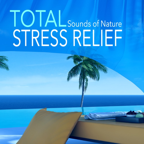 Total Stress Relief - Hypnotic Mind Clearing Sounds of Nature for Relieving Stressful Feelings