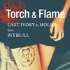 Torch & Flame (feat. Pitbull) - EP ジャケット写真