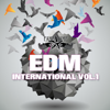 EDM International, Vol. 1 - Various Artists
