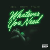 Meek Mill - Whatever You Need (feat. Chris Brown & Ty Dolla $ign)
