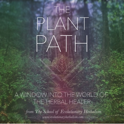 Cover image of The Plant Path