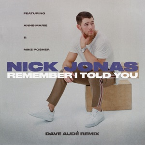 Remember I Told You (feat. Anne-Marie & Mike Posner) [Dave Audé Remix] - Single Mp3 Download