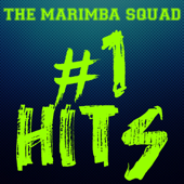 Rockabye (Marimba Remix) - The Marimba Squad