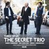 The Secret Trio - My Dark Place artwork