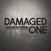 Big Head Todd & The Monsters - Damaged One