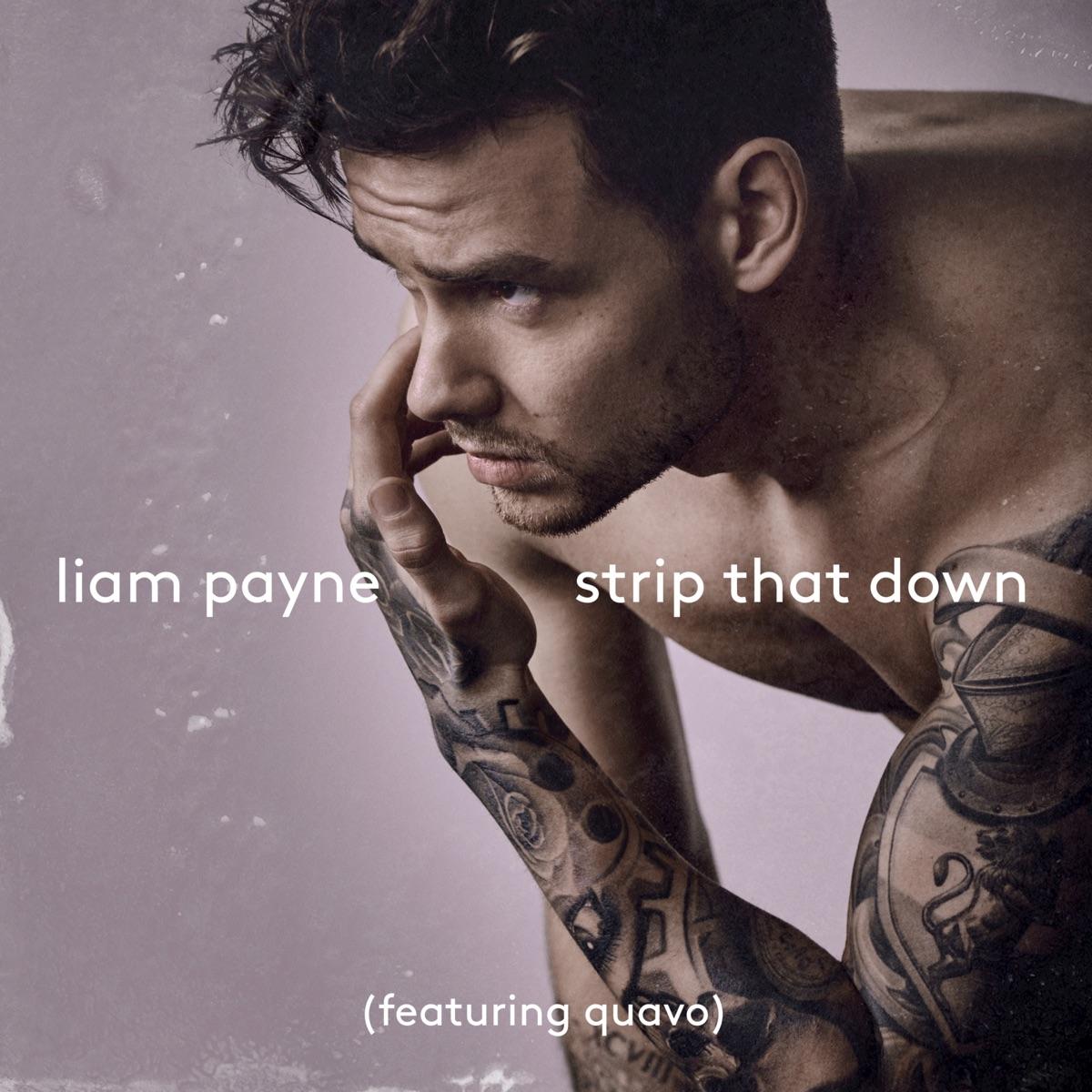 Strip That Down feat Quavo Nevada Remix - Single Liam Payne CD cover