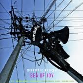 Genetic Drugs - Ananda Sagara (Sea Of Joy)