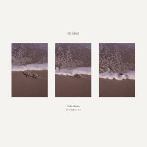 I Can Still See You - EP