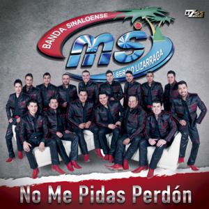 Banda MS de Sergio Lizárraga - No Me Pidas Perdón