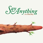 Say Anything - I Want To Know Your Plans