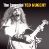 The Essential Ted Nugent, Ted Nugent